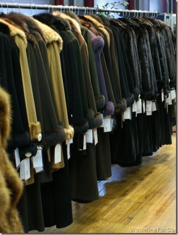 Wolverine Furs Showroom